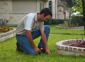 Jack is part of of our sprinkler repair in Farmers Branch and he is installing a new head